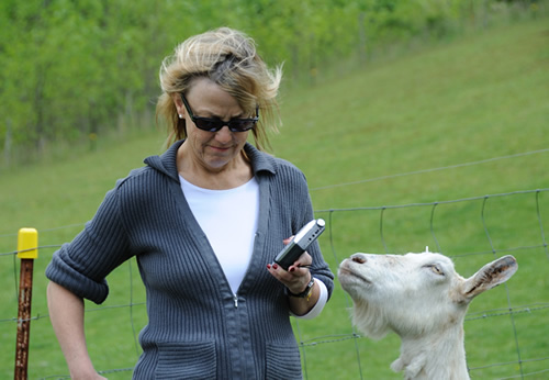 Katherine Leiner interviewing a goat